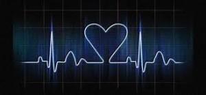 Electrophys 12 5 12